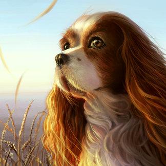 Mammal Paintings
