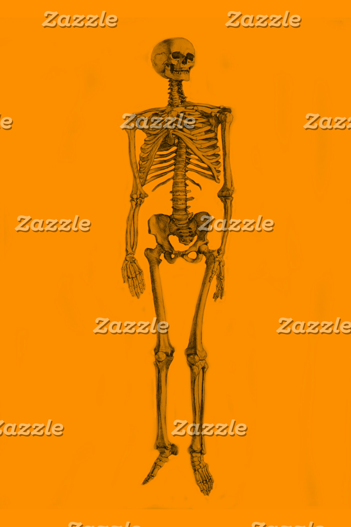 Skeleton/Skulls