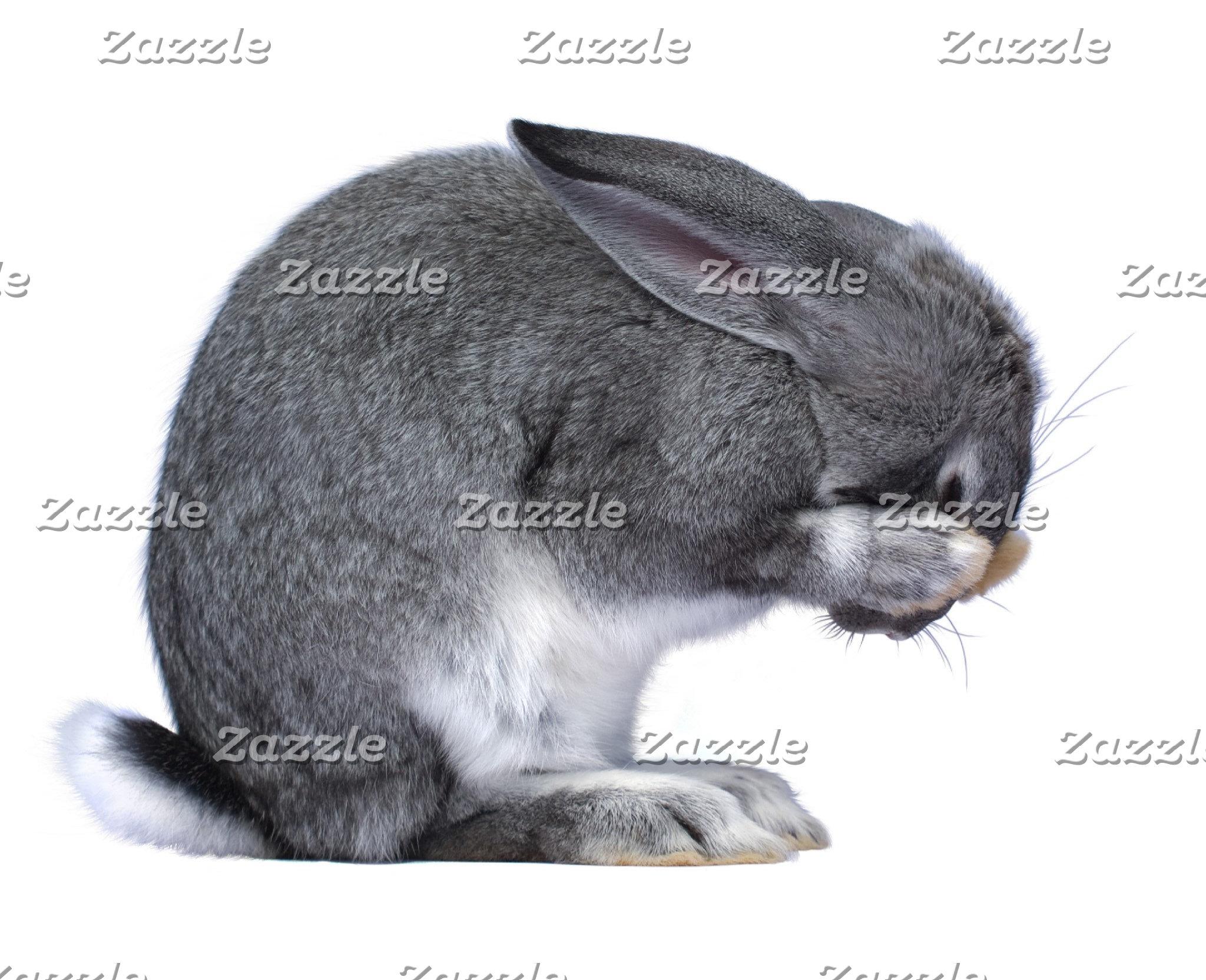 Despairing Rabbit