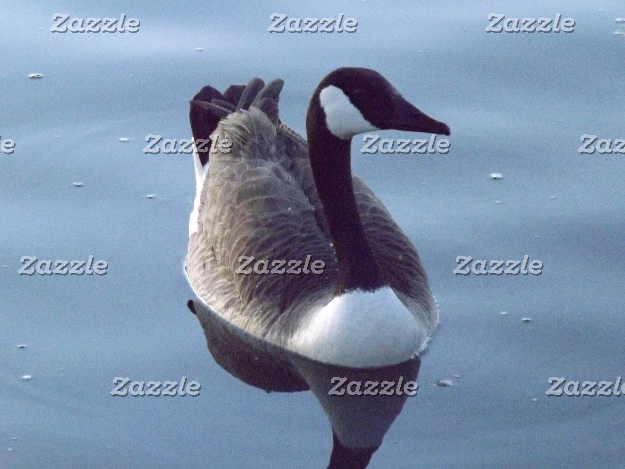 Gallant Goose