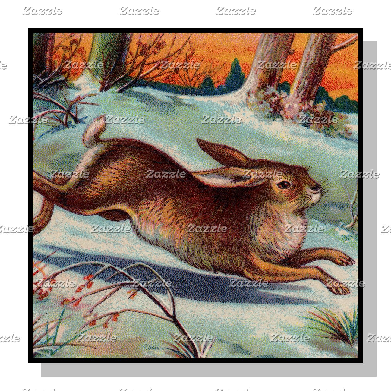 December Rabbit