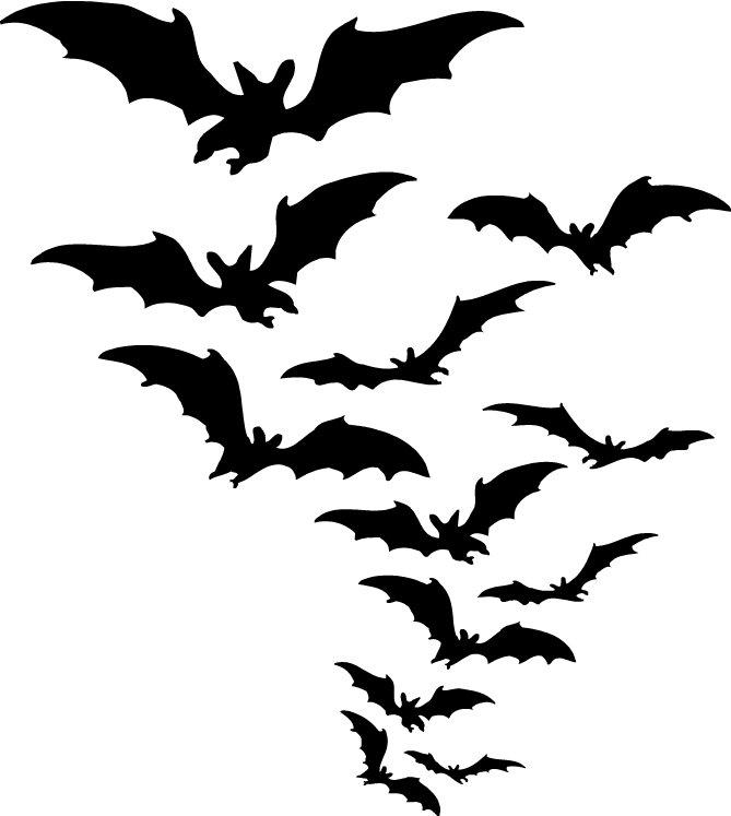 Bats T-Shirts