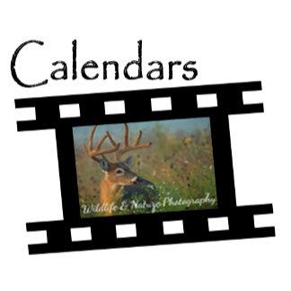 2018 Photography Calendars