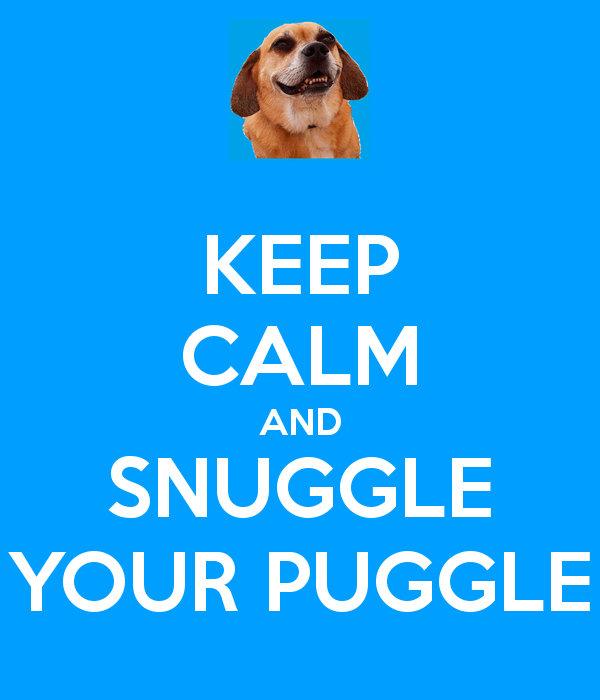 Snuggle Your Puggle!