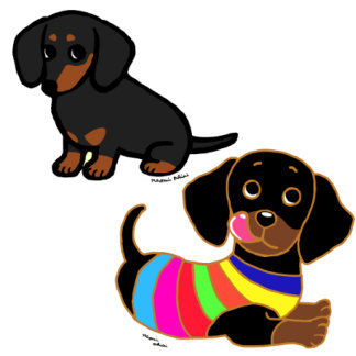 Black and Tan Smooth Haired Dachshund