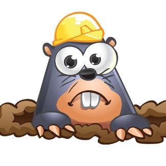 Animal - Mole
