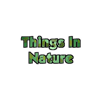 Things In Nature