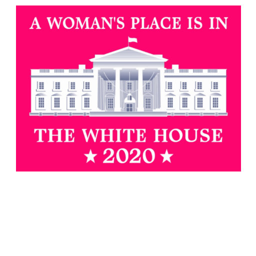 A Woman's Place is in the White House