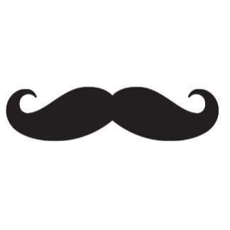 Moustaches Are Fun