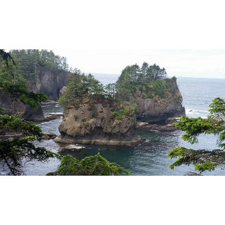 Cape Flattery Collection
