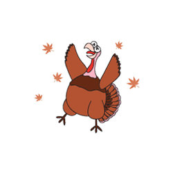Happy Thanksgiving & Funny Turkey