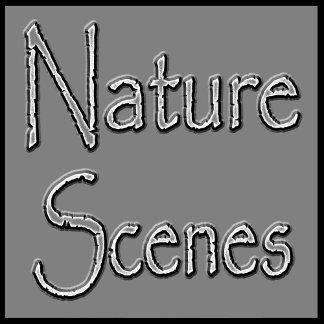 Nature Scenes