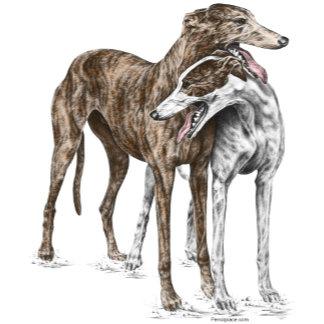 Greyhound Dog Art