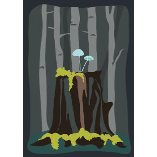 In the Dark Woods