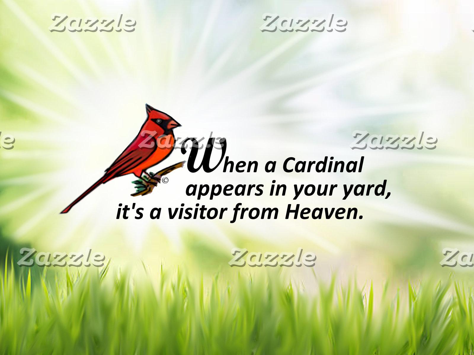 Cardinal in Your Yard