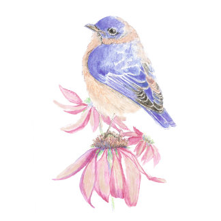 Bluebird Garden