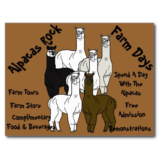Alpaca Farm Days, Business and Home Decor Products
