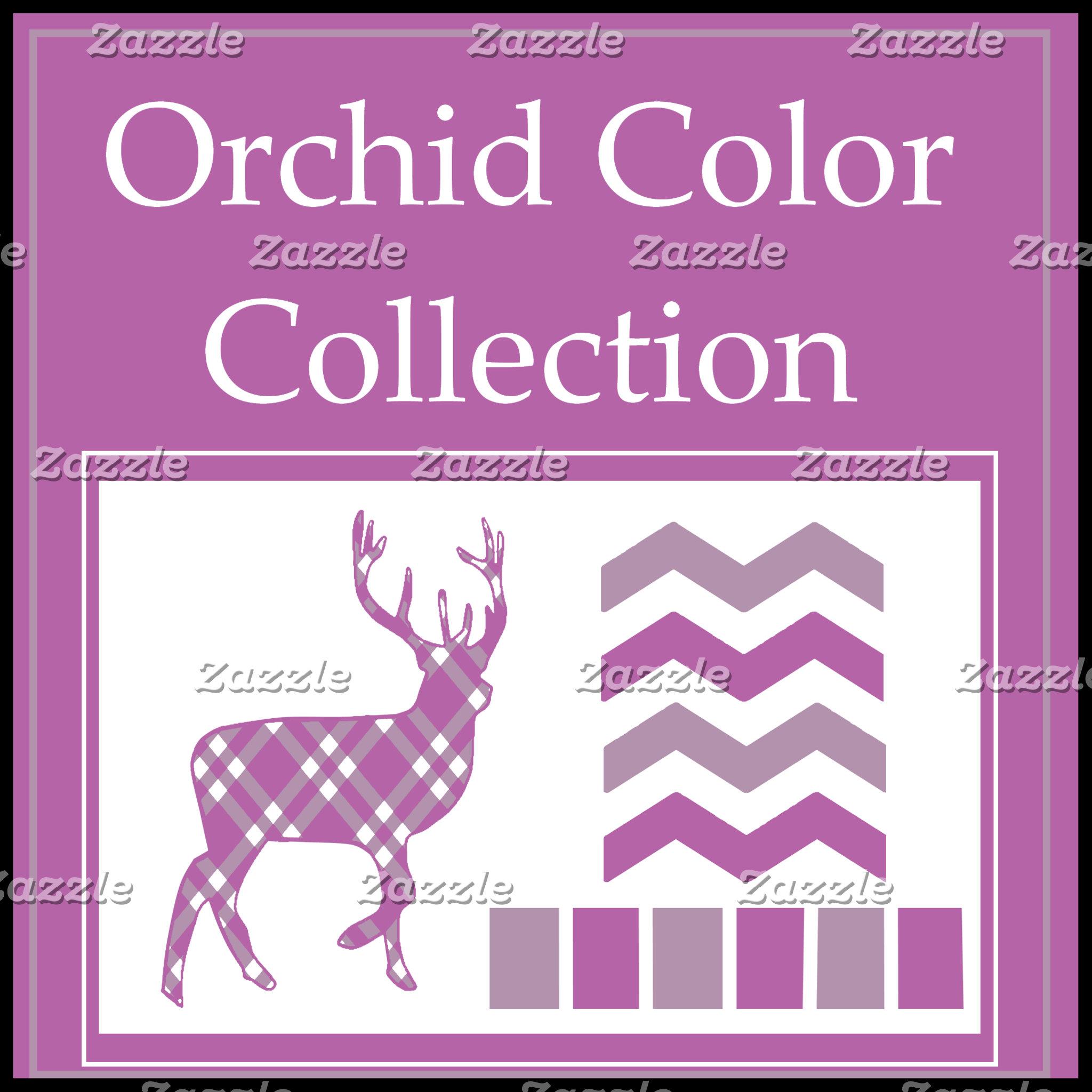 Orchid Colors
