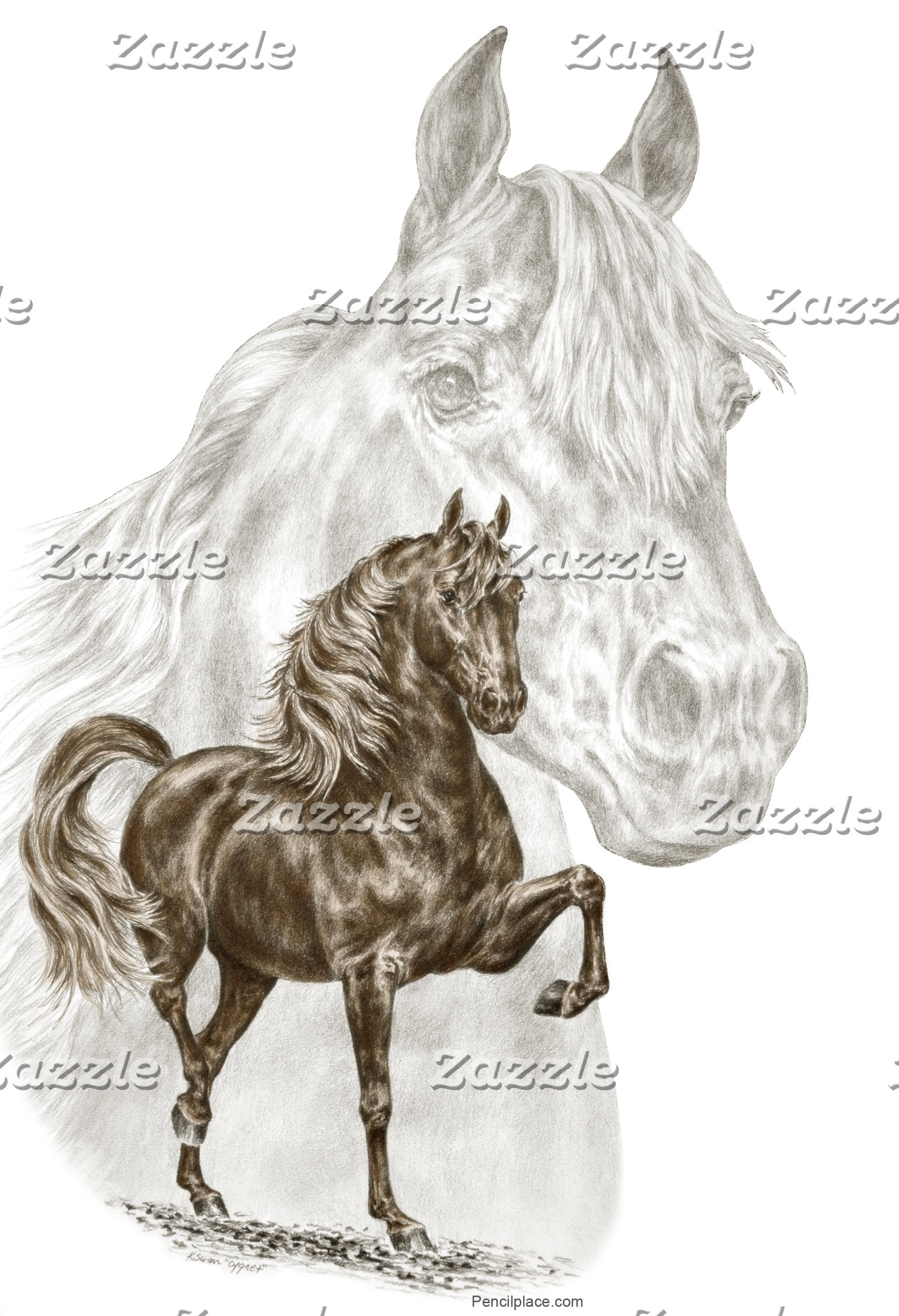 Morgan Horse Art