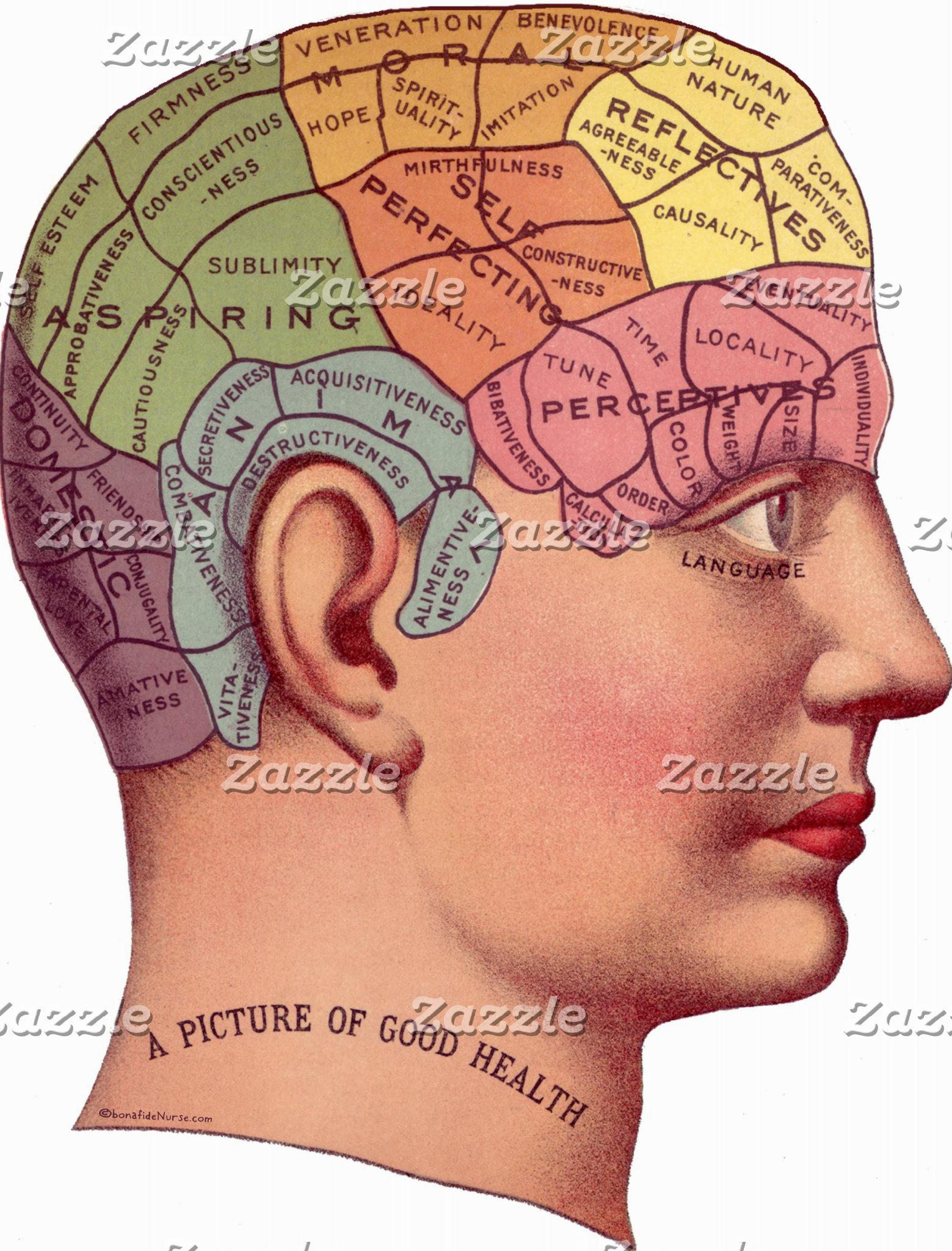 Vintage Brain Illustration
