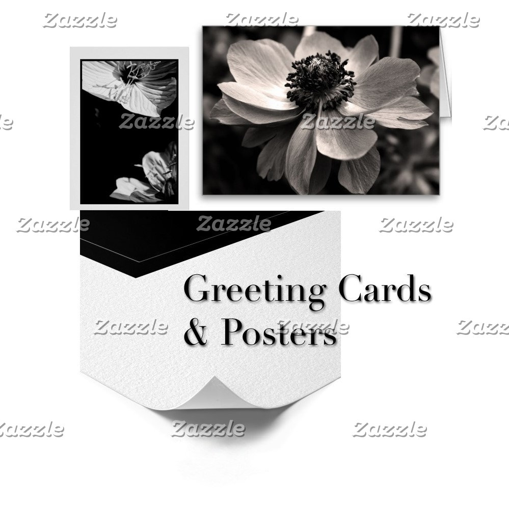01 - Black and White Photography