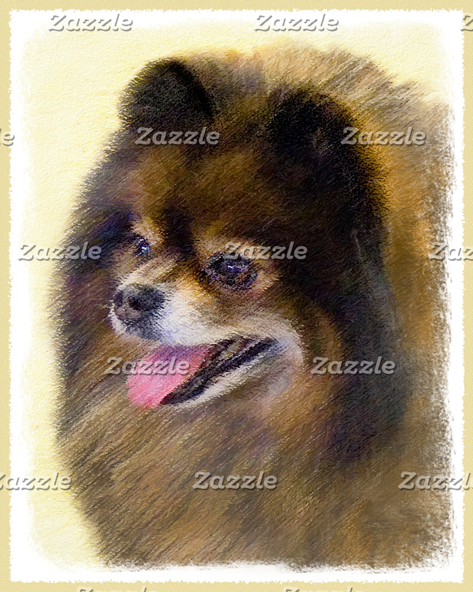Pomeranian (Black and Tan)
