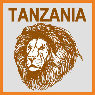 Tanzania With Lion