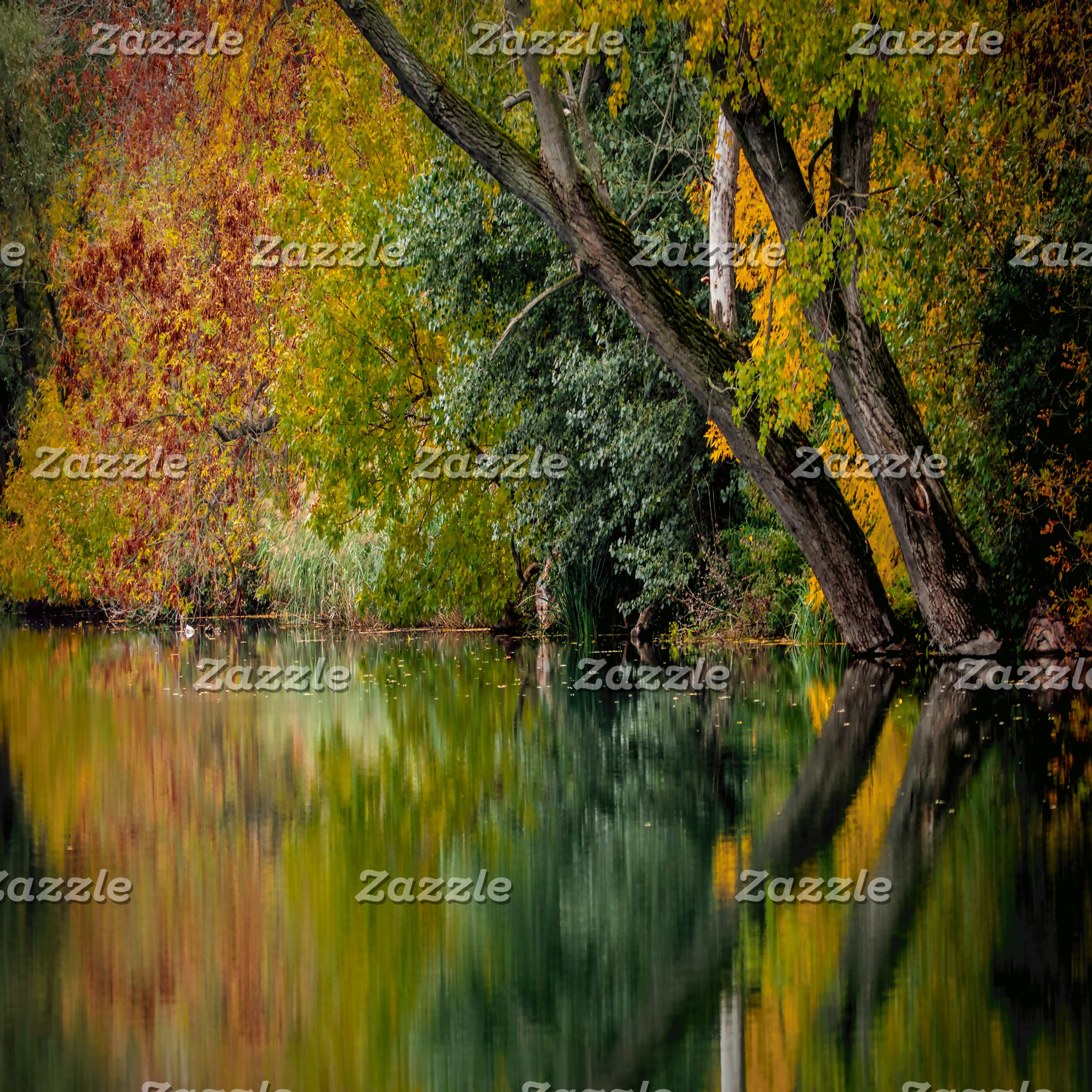 Autumn Riverbank