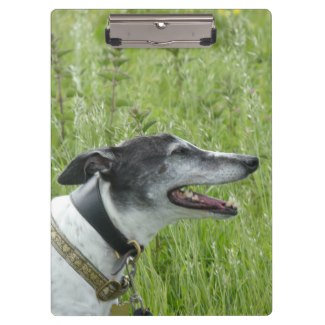 Greyhound clipboards