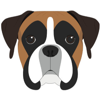 Cute Boxer Dog Portrait