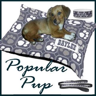 Popular Pup