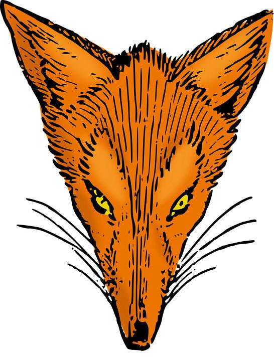 Fox Lineup