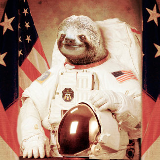 Sloth astronaut-sloth-space sloth-sloth gifts