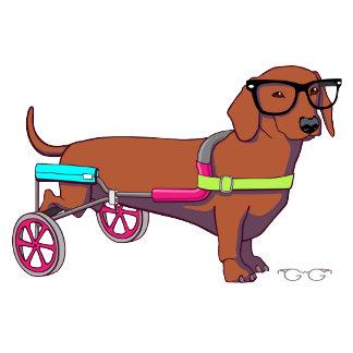 Hipster 2-legged Dog