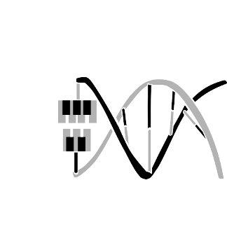 Keys to the Music Gene