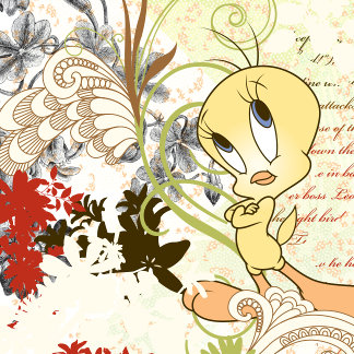 Tweety So Fly Collection