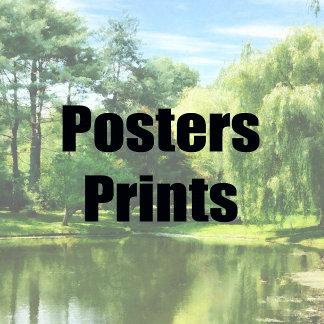 1.  PRINTS &  POSTERS