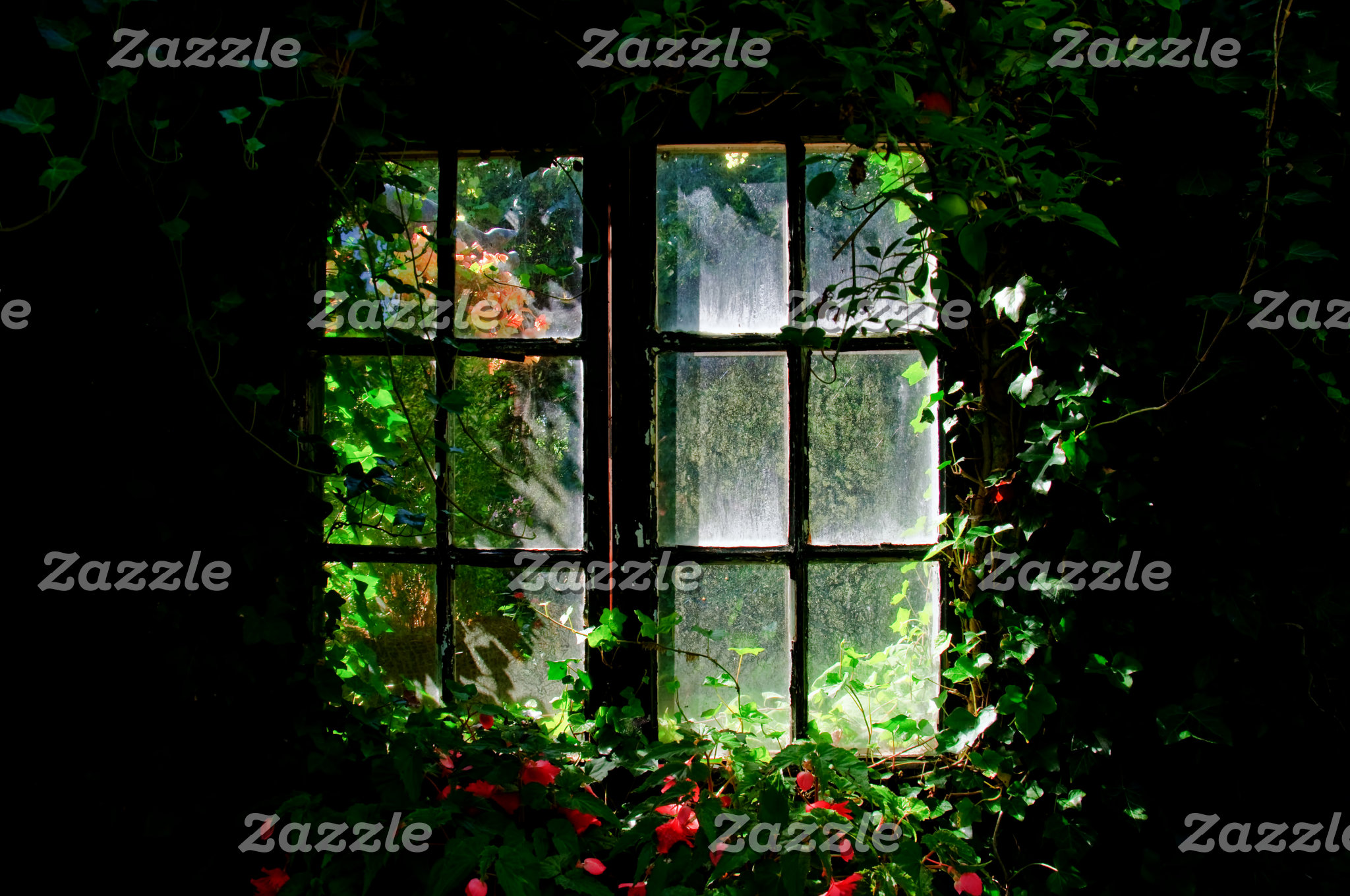 Window in a cottage garden