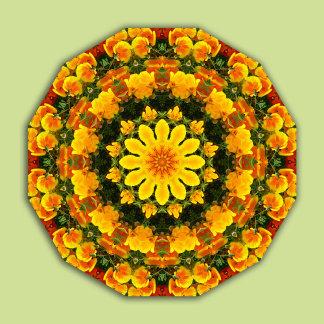 Nature Mandalas, floral