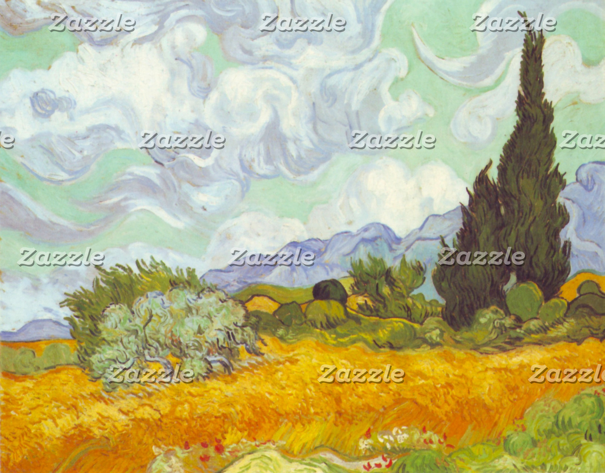 Cornfield With Cypresses