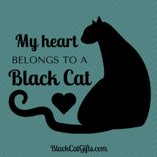 My Heart Belongs to a Black Cat