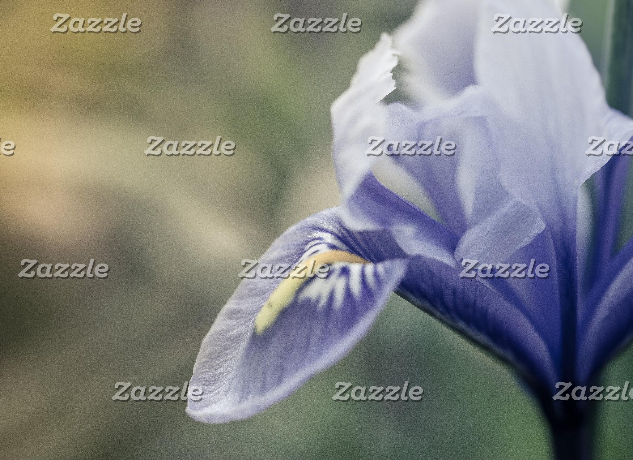 Plants/Flora