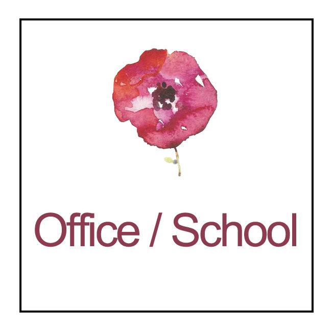 Office / School