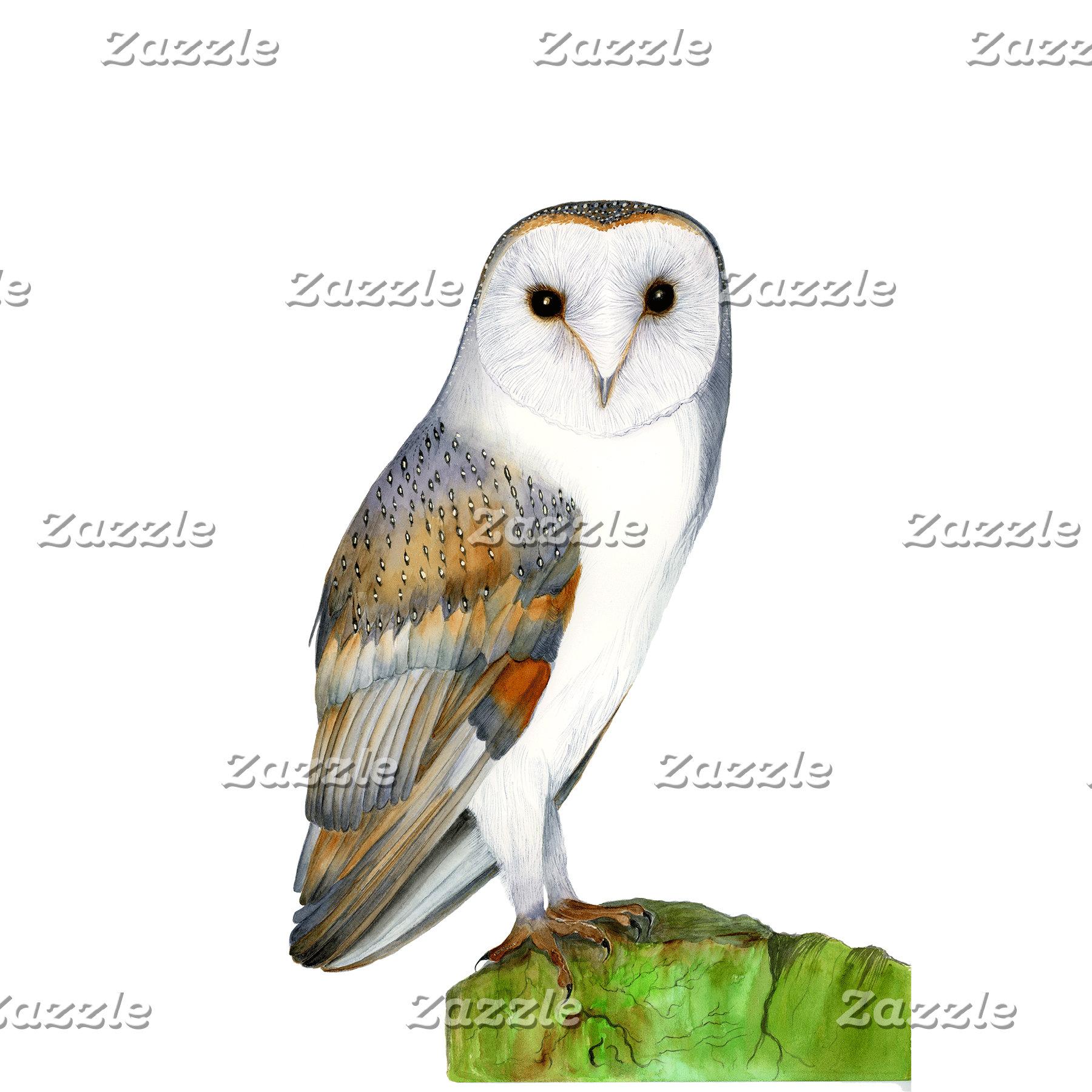 Barn Owl Watercolor Artwork
