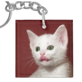 Cat Keychain, Stickers