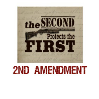 e) guns / 2nd amendment