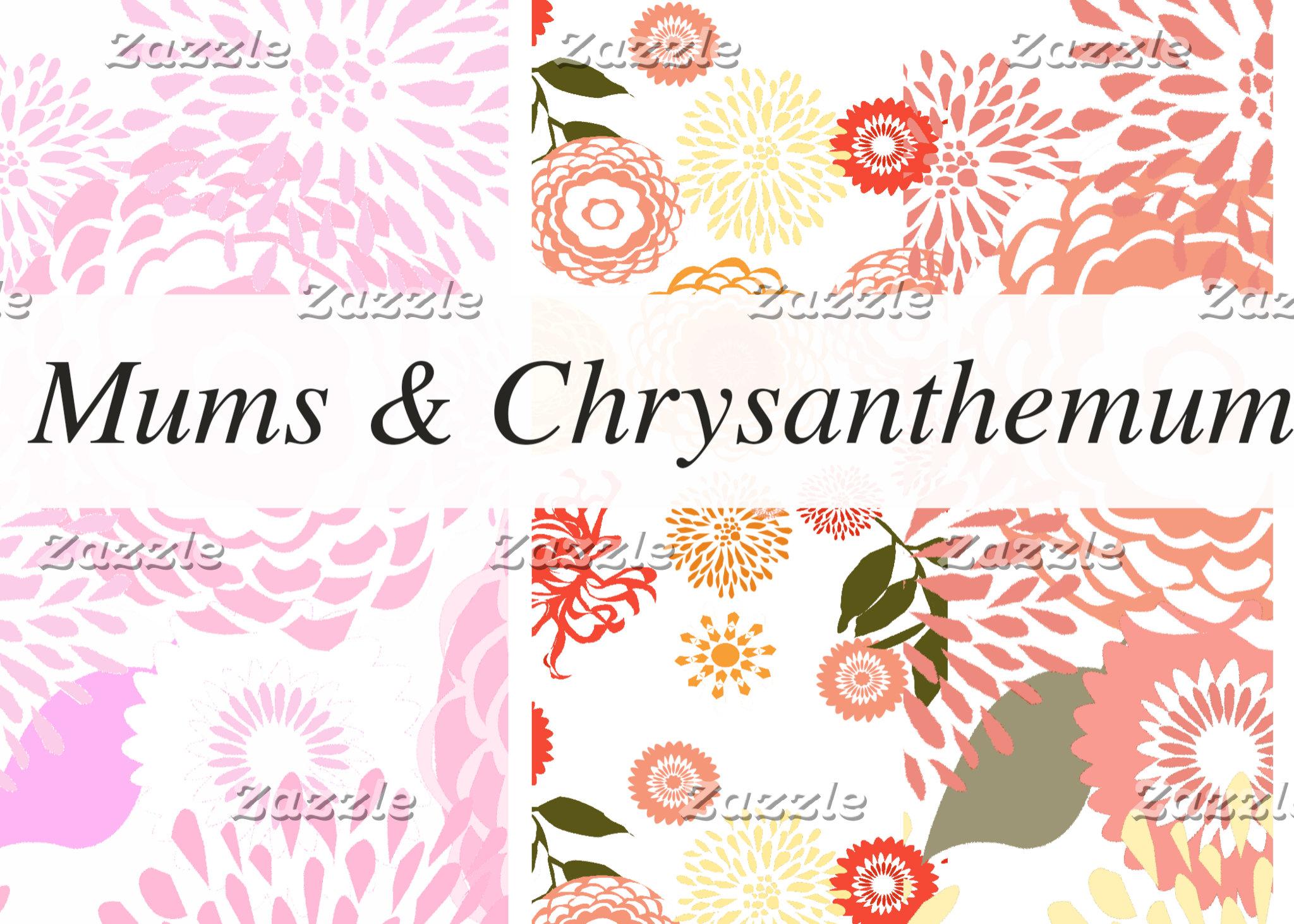 Chrysanthemum & Mums