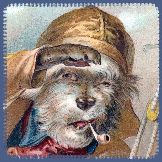DIVERSE DOGS - Vintage Pictures