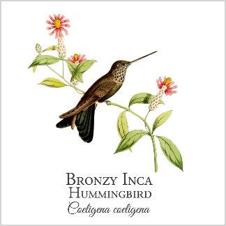 Bronzy Inca
