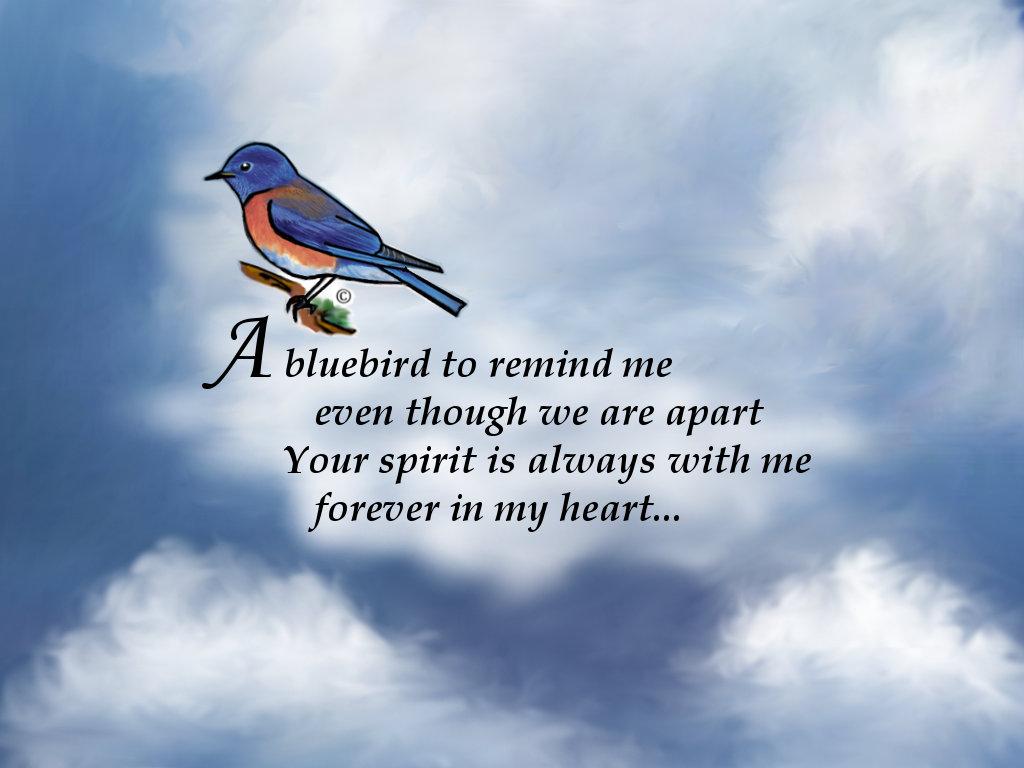 Bluebird Memorial Poem